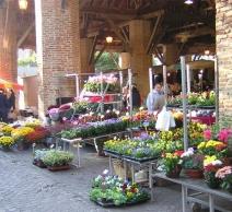 marché-en-fleurs