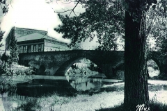 Pont Save