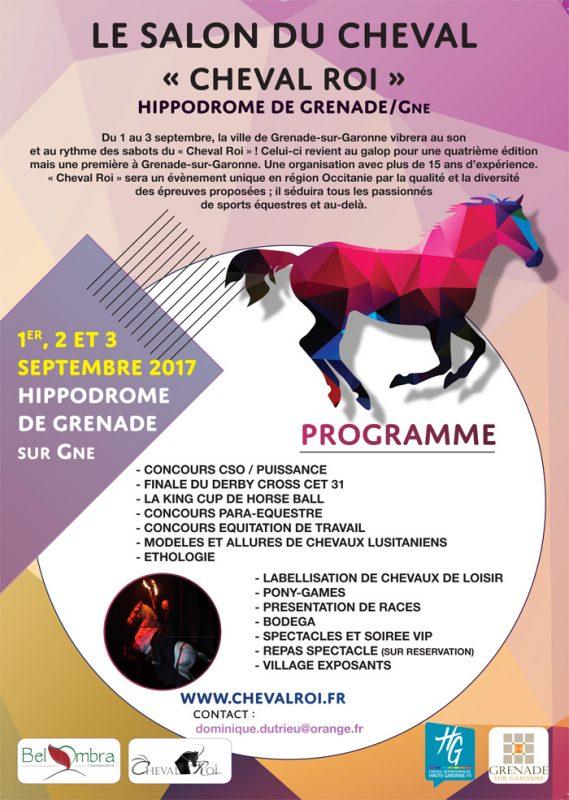 Le salon du cheval mairie de grenade for Salon du cheval angers 2017