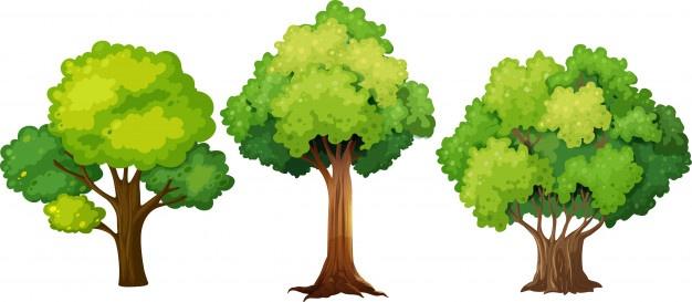 Plantation des derniers arbres du verger